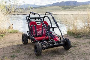 coleman powersports go cart gas